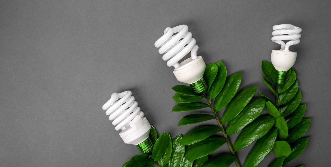 led-lamp-with-green-leaf-eco-energy-concept-close-PMHPR9U